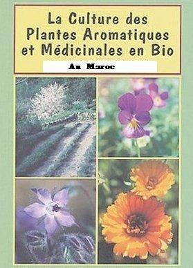 Les plantes médicinales au Maroc.